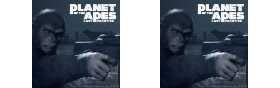 Planet of the Apes Series